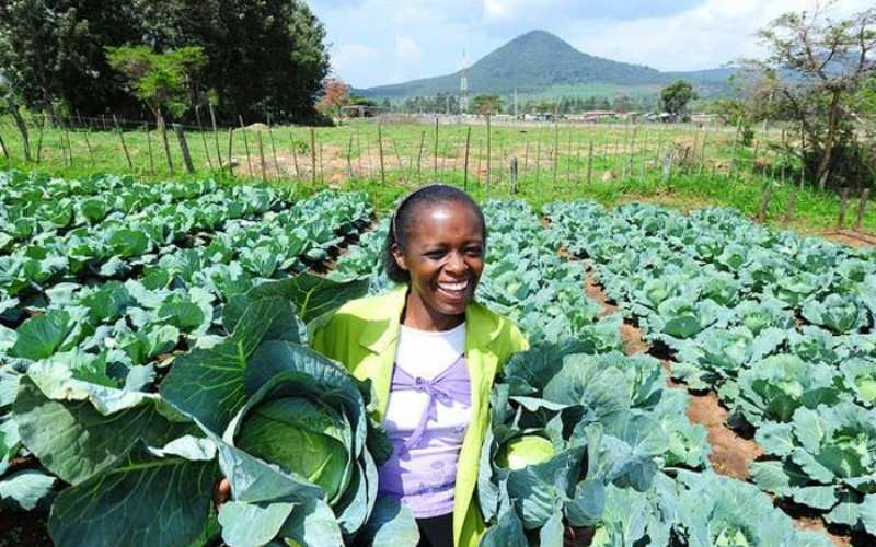 Equity Supports Small-Scale Farmers  with Tailor-Made Financing