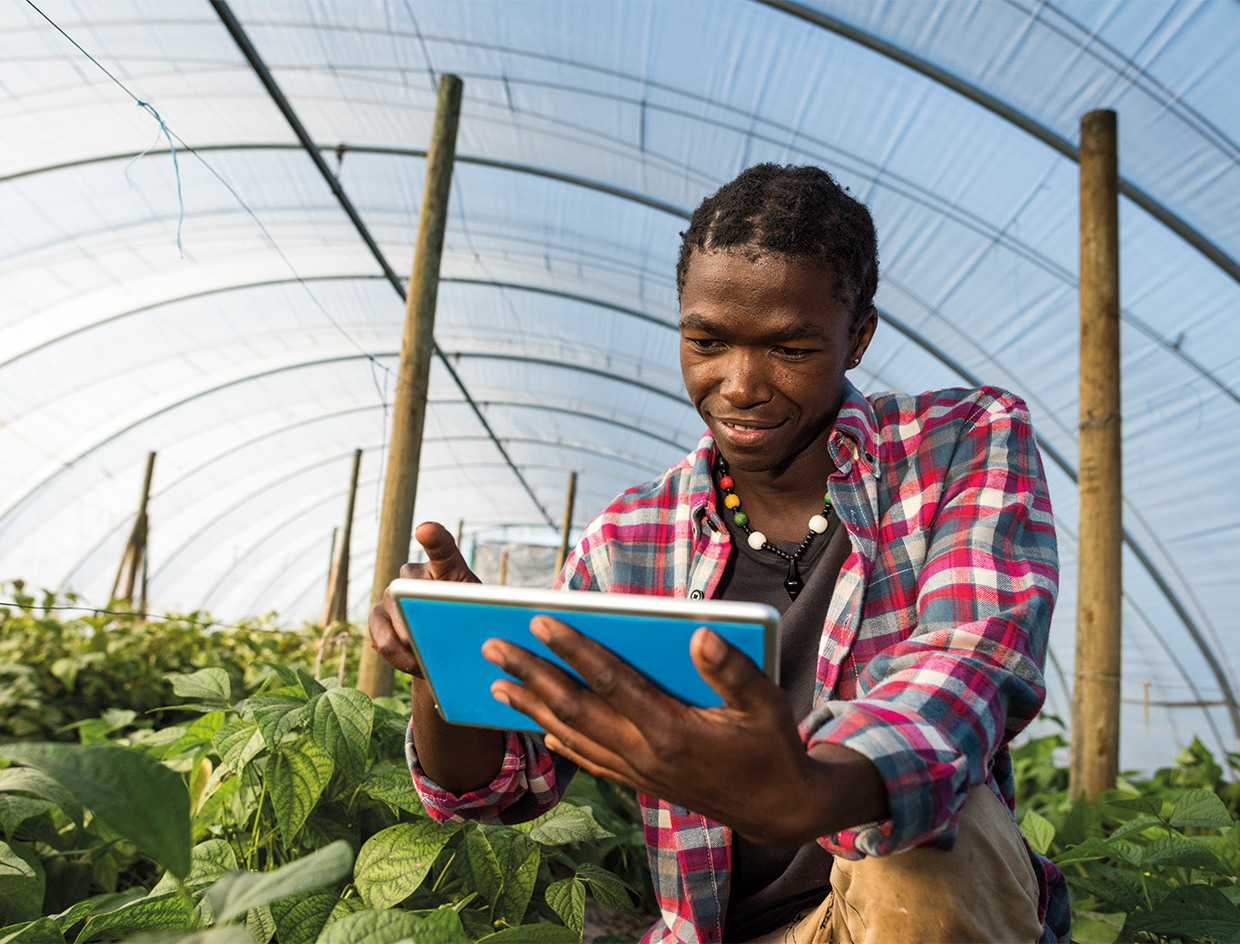 Cereals Board Partners with Digifarm to Enable Farmers Access Post-Harvest Services